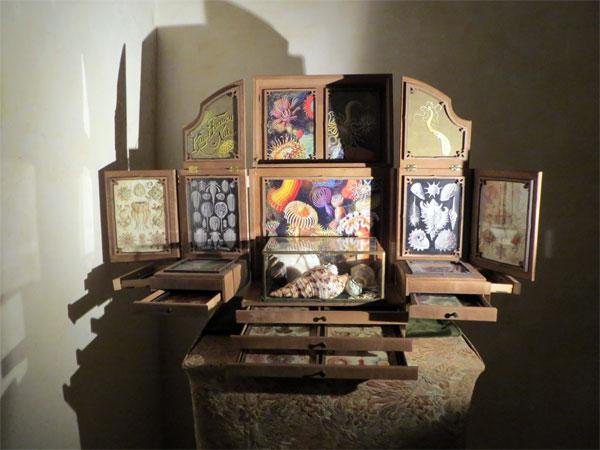 Un très joli cabinet autour des coquillages