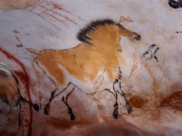 Un cheval de Lascaux
